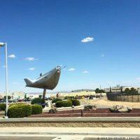 6702-nasa_edwards_air_force_base-jim_sharkey