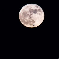 8473-supermoon_november_2016_-sean_costello