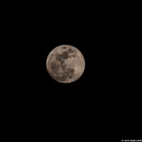 super-blue-moon-eclipse-on-31-jan-sean-costello-14579