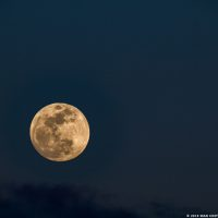 super-blue-moon-eclipse-on-31-jan-sean-costello-14580