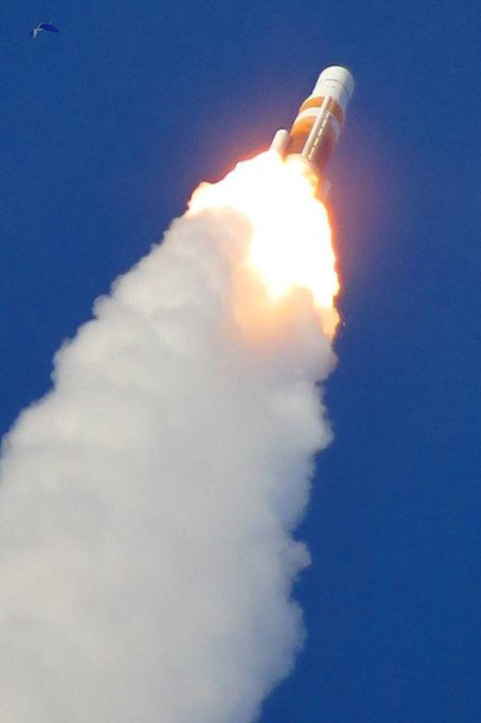 Many launch vehicles, such as ULA's Delta IV Medium see here, use strap on solid rocket boosters on their first stage. These boosters provided the extra lift required to place payloads on orbit. Photo Credit: Carleton Bailie / SpaceFlight Insider