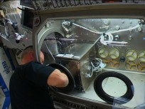 Expedition 41 Commander Barry Butch Wilmore installs 3D printer on ISS International Space Station NASA TV image posted on SpaceFlight Insider