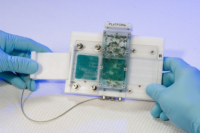 A T-bar is used to slide a fresh food tray into a Fly Cassette as seen on Spaceflight Insider