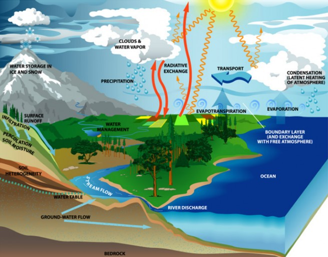 Graphic depicting global water cycle as seen on Spaceflight Insider