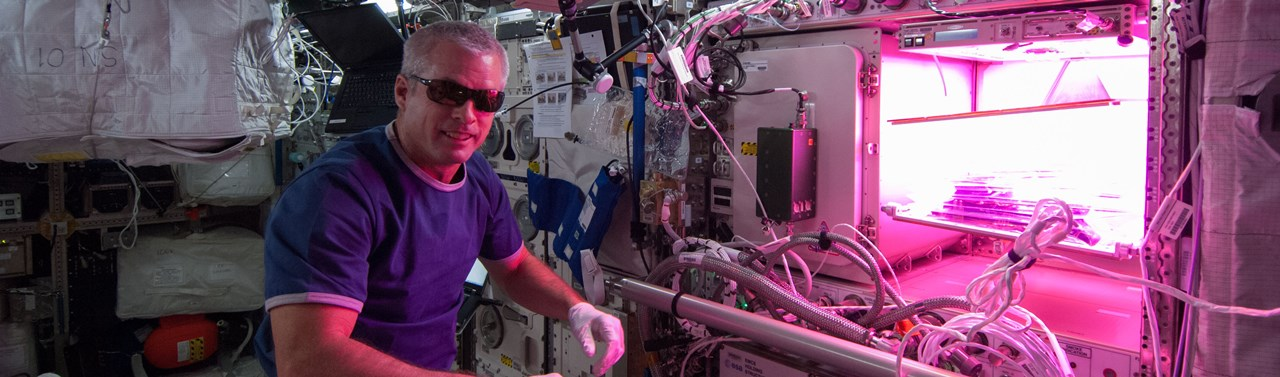 NASA astronaut Steve Swanson VEGGIE experiment International Space Station ISS NASA photo posted on SpaceFlight Insider