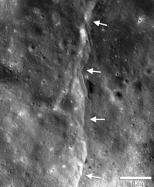 Thousands of young, lobate thrust fault scarps have been revealed in Reconnaissance Orbiter Camera images (LROC). Lobate scarps like the one shown here are like stair-steps in the landscape formed when crustal materials are pushed together, break and are thrust upward along a fault forming a cliff. Cooling of the still hot lunar interior is causing the Moon to shrink, but the pattern of orientations of the scarps indicate that tidal forces are contributing to the formation of the young faults. Image Credit: NASA/LRO/Arizona State University/Smithsonian Institution