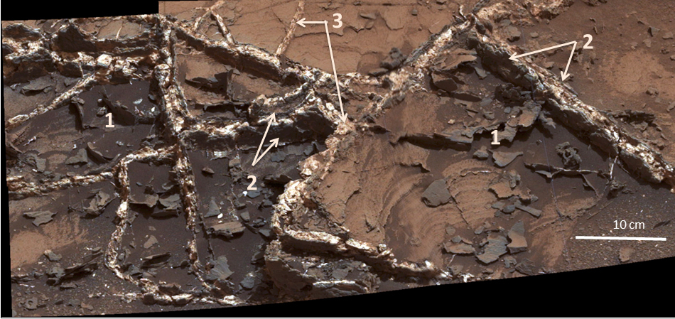 "Prominent mineral veins at the ""Garden City"" site examined by NASA's Curiosity Mars rover vary in thickness and brightness, as seen in this image from Curiosity's Mast Camera (Mastcam). Image Credit: NASA/JPL-Caltech/MSSS"
