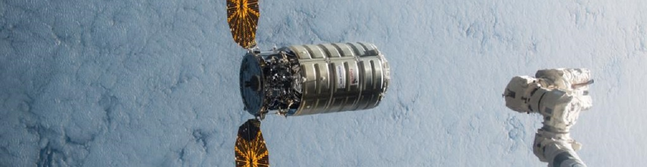 Cygnus and Arm