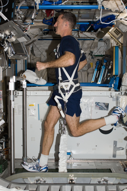 Astronaut Dan Burbank runs on the T2 Treadmill with the aid of the Glenn Harness aboard the ISS. The harness is so-named after its development at the NASA Glenn Research Center in Cleveland, Ohio. When runners take off on the London Marathon this Sunday, British astronaut Tim Peake will also run the marathon from 250 miles above in the ISS, courtesy of the T2 Treadmill and Glenn Harness. Photo Credit: NASA posted on SpaceFlight Insider