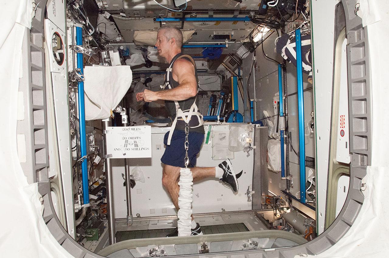 ISS crew tackles advanced science, Tim Peake preps for marathon - SpaceFlight Insider