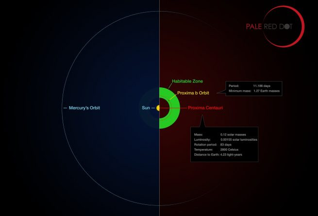 Proxima Centauri and its planet (Proxima b) compared to the Solar System