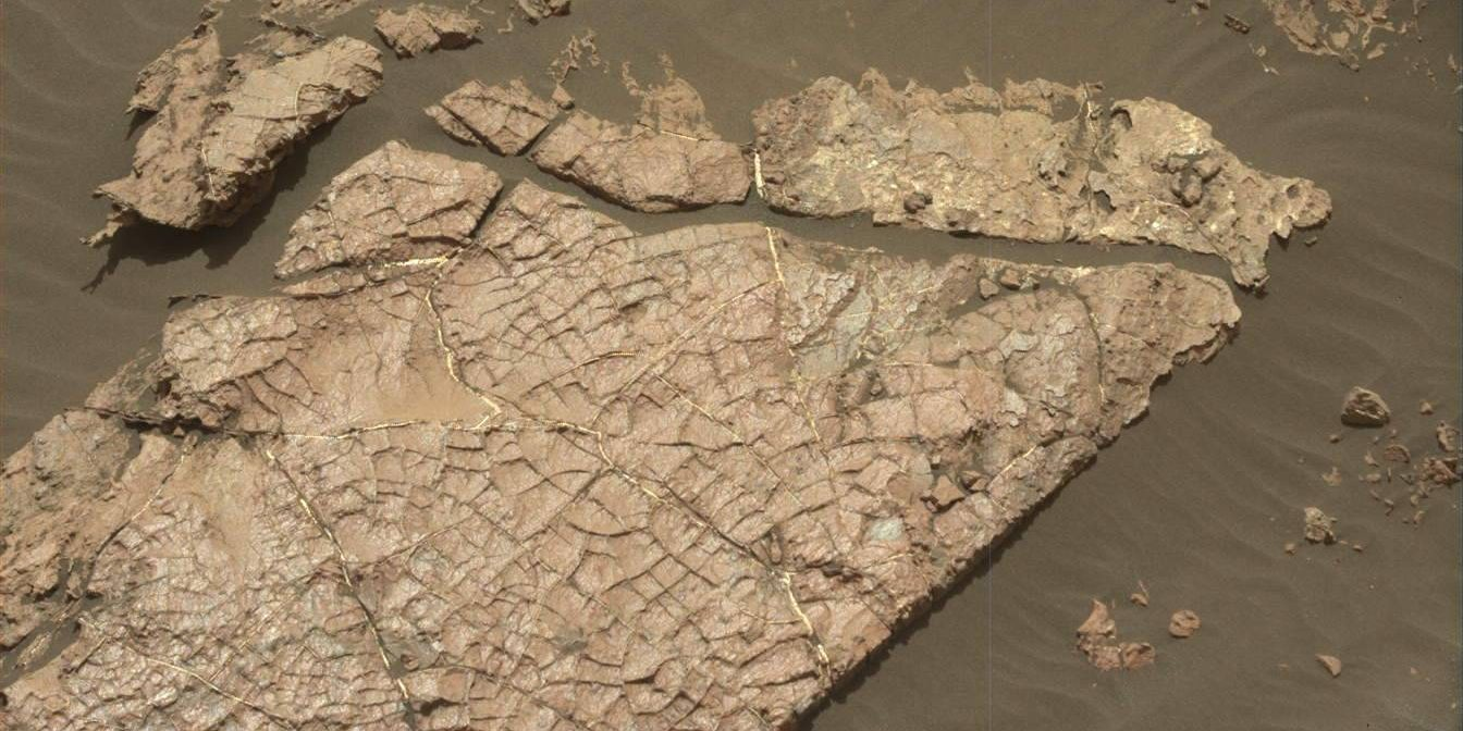 MastCam image of 'Old Soaker', one of several potential rock targets at the Curiosity Mars rovers current location. Image Credit: NASA/JPL-Caltech
