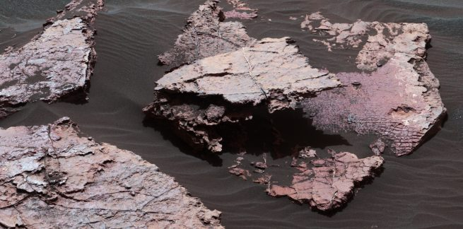 Curiosity at 'Squid Cove' rock