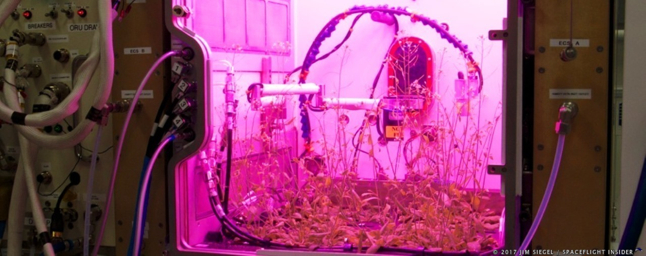 This prototype of the Advanced Plant Habitat System illustrates the complex maze of sensors, heaters, water tubes, and lighting that comprise the NASA System of fast-growing plants in the microgravity of space. A more compact version of this prototype is on its way to the ISS aboard Orbital ATK's Cygnus spacecraft launched on April 18, 2017. Photo Credit: Jim Siegel / SpaceFlight Insider