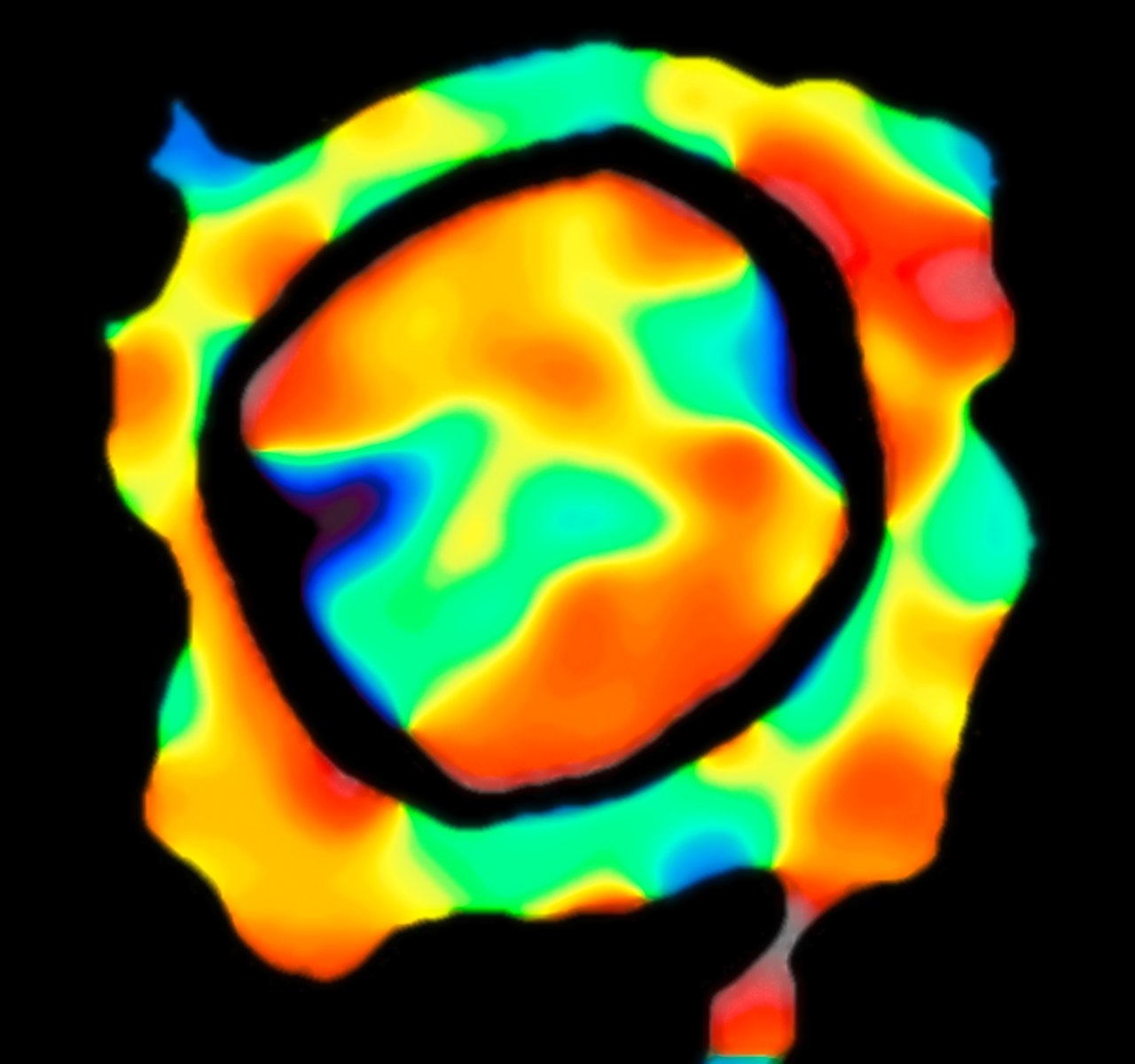 VLTI velocity map of the surface of Antares