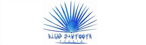 Blue Sawtooth Studio